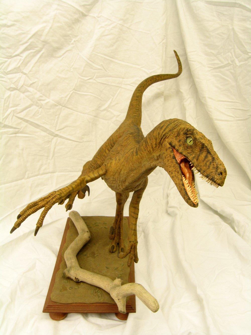 Build Report Horizon S 1 5th Scale Velociraptor