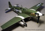 pegasus_hobbies_p-51b-8
